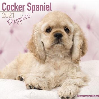 Calendário 2021 Cocker Spaniel