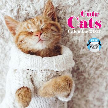 Calendário 2017 Cute cats