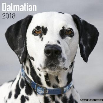 Calendário 2018 Dalmatian