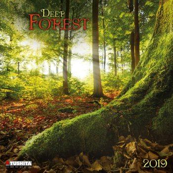 Calendário 2019  Deep Forest