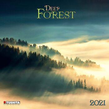 Calendário 2021 Deep Forest