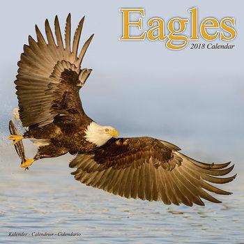 Calendário 2018 Eagles