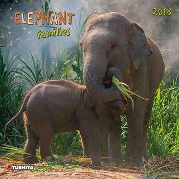 Calendário 2018 Elephant Families