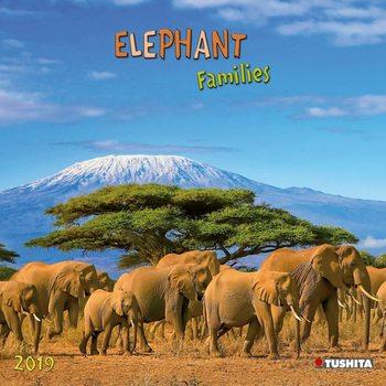Calendário 2019  Elephant Families