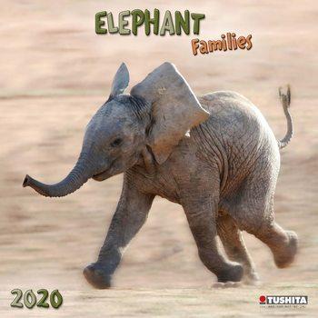 Calendário 2020  Elephant Families