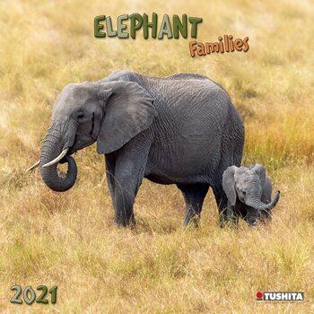 Calendário 2021 Elephant Families
