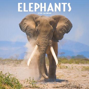 Calendário 2018 Elephants