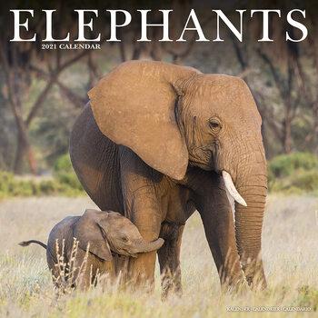 Calendário 2021 Elephants