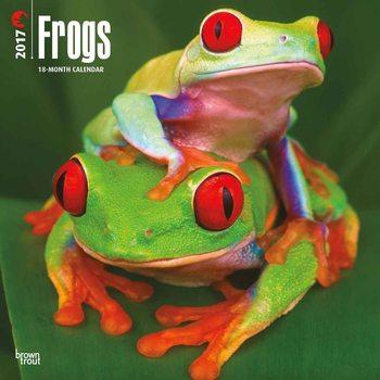 Calendário 2017 Frogs