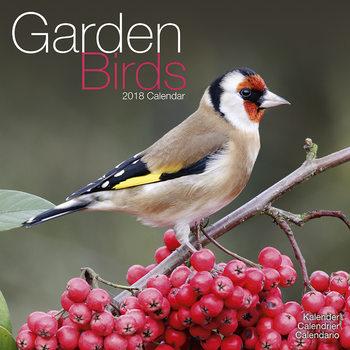 Calendário 2018 Garden Birds
