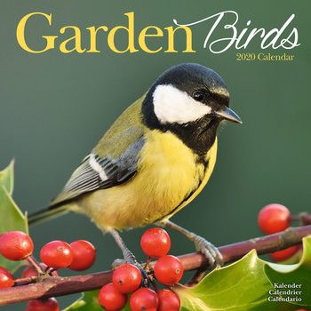 Calendário 2020  Garden Birds