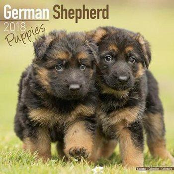 Calendário 2018 German Shepherd