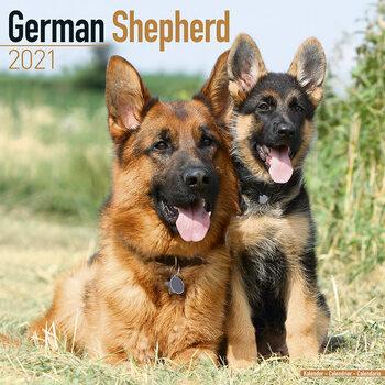 Calendário 2021 German Shepherd