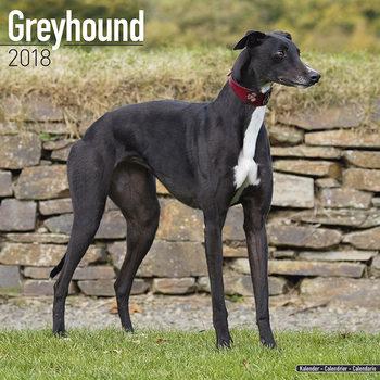 Calendário 2018 Greyhound