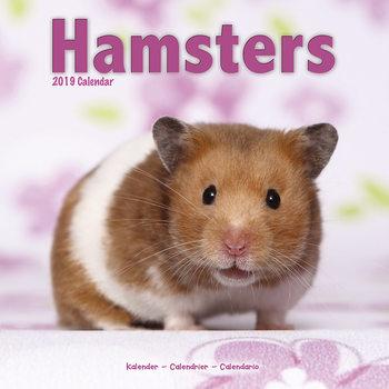 Calendário 2019  Hamsters