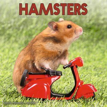 Calendário 2020  Hamsters