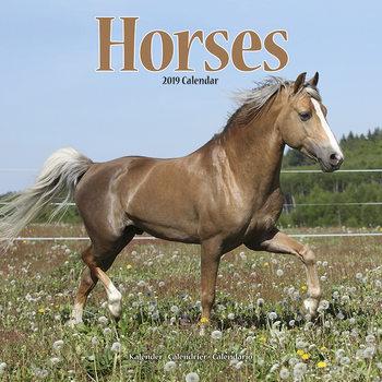 Calendário 2019  Horses
