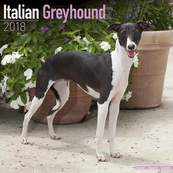 Calendário 2018  Italian Greyhound