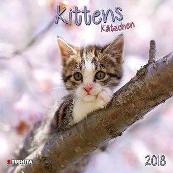 Calendário 2018 Kittens