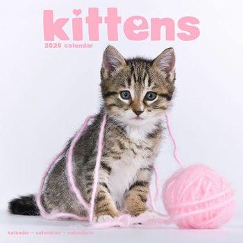 Calendário 2020  Kittens