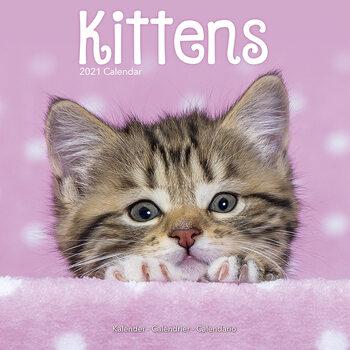 Calendário 2021 Kittens