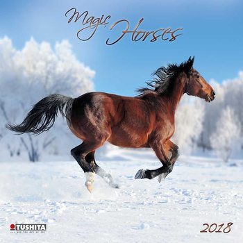 Calendário 2018 Magic Horses