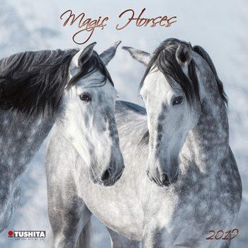 Calendário 2019  Magic Horses