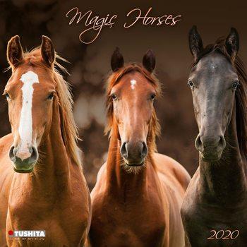 Calendário 2020  Magic Horses