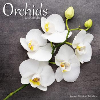 Calendário 2018 Orchids