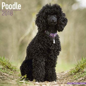 Calendário 2018 Poodle