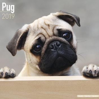 Calendário 2019  Pug
