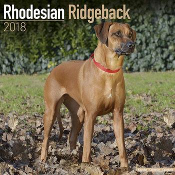 Calendário 2018 Rhodesian Ridgeback