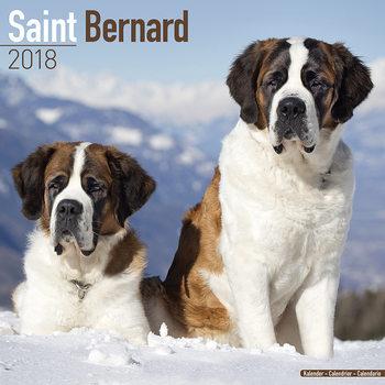 Calendário 2018 Saint Bernard
