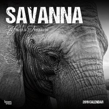 Calendário 2019  Savanna - Africas Treasure
