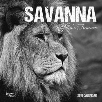 Calendário 2018 Savanna