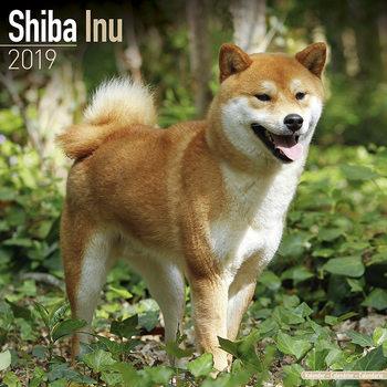 Calendário 2019  Shiba Inu