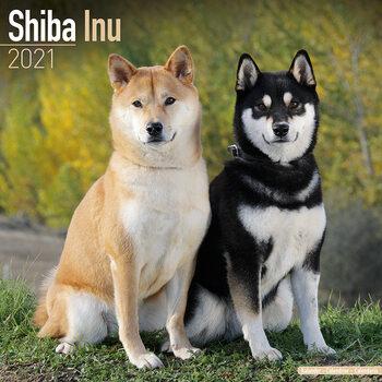 Calendário 2021 Shiba Inu