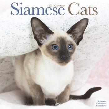Calendário 2021 Siamese Cats