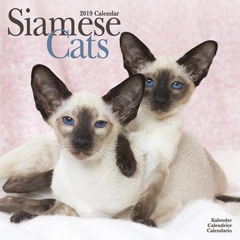 Calendário 2019  Siamese