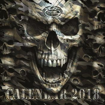 Calendário 2018 Spiral