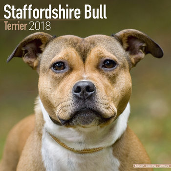 Calendário 2018 Staffordshire Bull Terrier