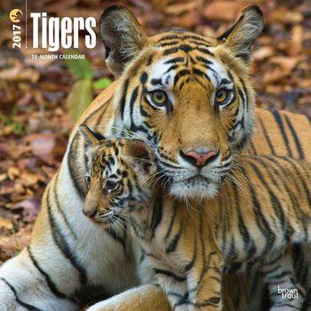 Calendário 2017 Tigers