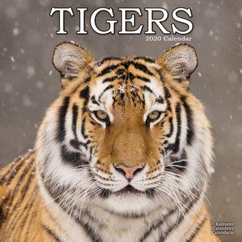 Calendário 2020  Tigers