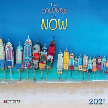 Calendário 2021 True Colours of Now