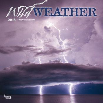 Calendário 2018 Wild Weather