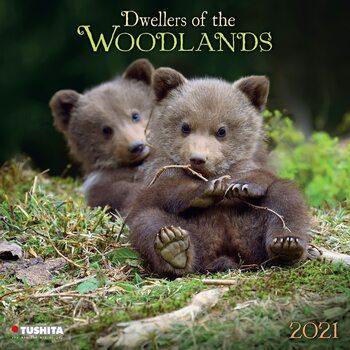 Calendário 2021 Woodlands