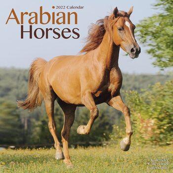 Calendário 2022 Arabian Horses