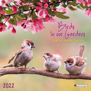 Calendário 2022 Birds in our Garden