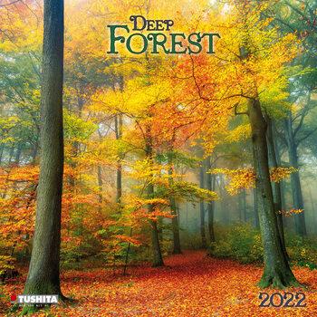 Calendário 2022 Deep Forest