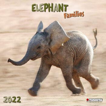 Calendário 2022 Elephant Families